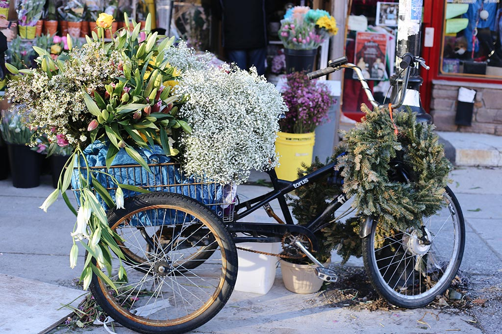 Bike full of flowers in front of Dragon Flowers
