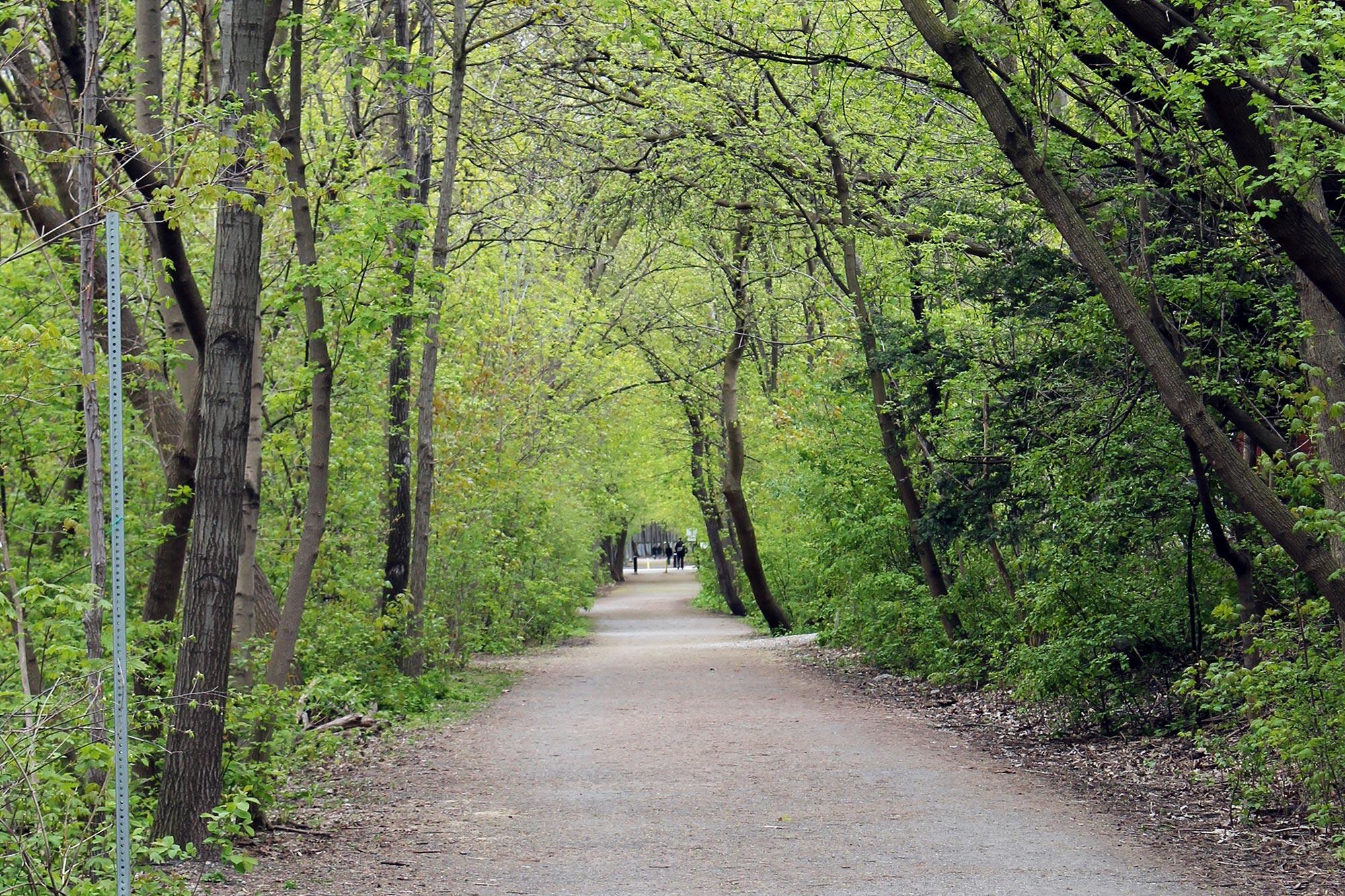 The Belt Line Trail