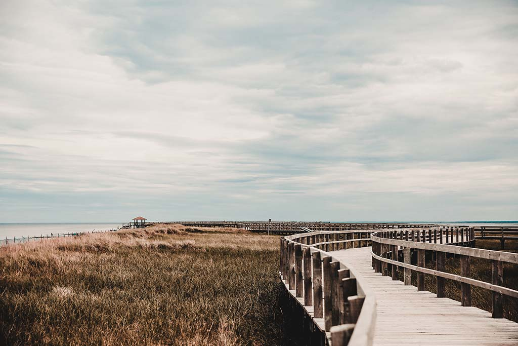 Beach by Bouctouche