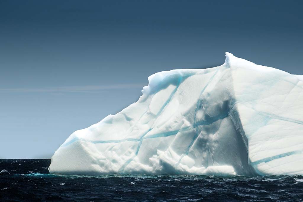 Icebergs of Saint John's