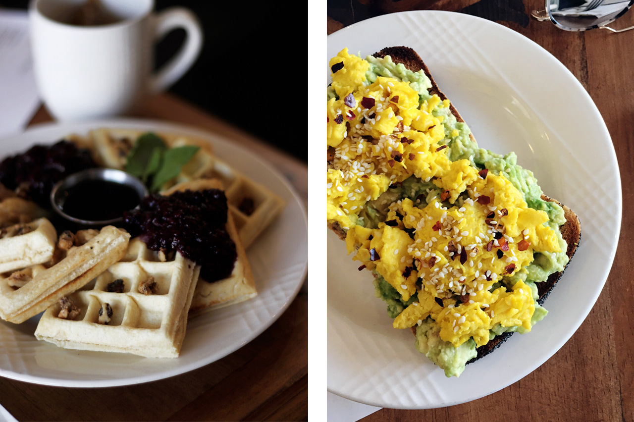 Waffles and Avocado Toast at Vibe Eatery