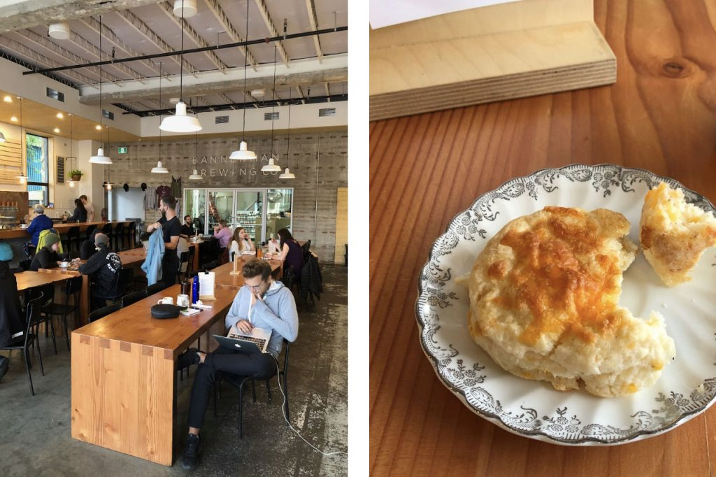 Interior shot of brewery with long wooden communal tables and hanging lights with a cheese biscuit on a plate